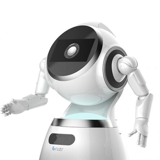 Robot Cruzr