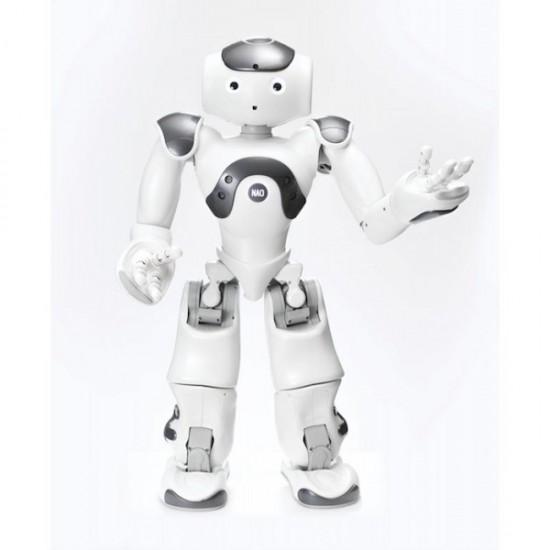 Licence logicielle Zora pour robot humanoïde NAO
