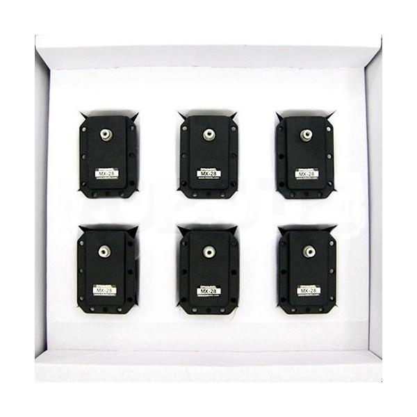 Pack of 6 Dynamixel MX-28R servomotors