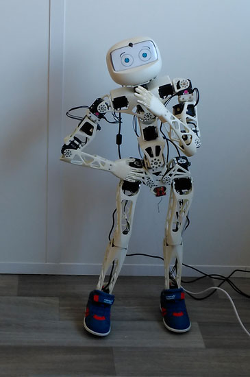 The Poppy robot, a real physiotherapy assistant