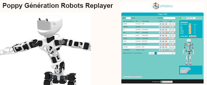poppy-application-grr-generation-robots-replayer-feature
