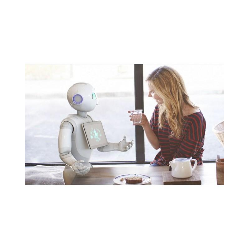 Interaktion mit dem Roboter Pepper