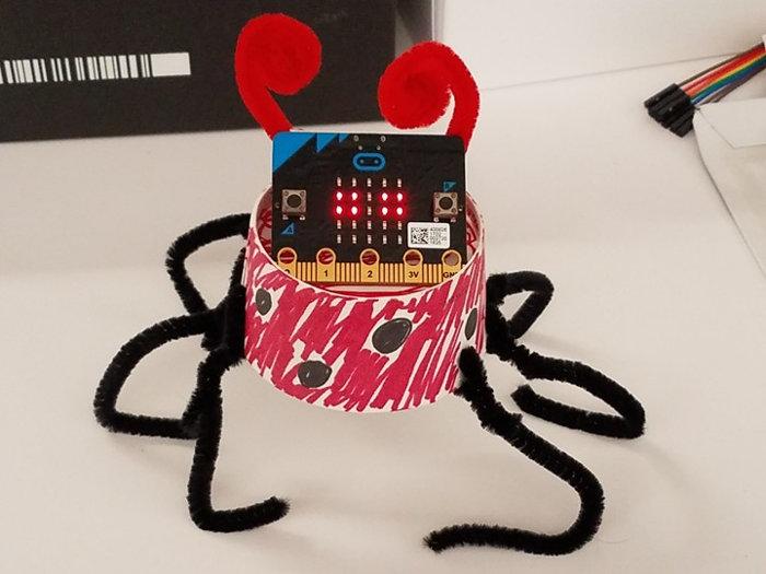 15-micropet-ladybug