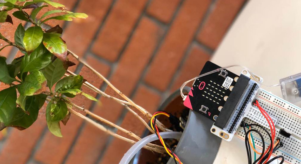 Domotique : arrosage automatisé basé sur une carte micro:bit