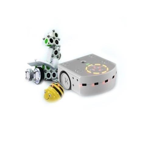 Elementary school robots