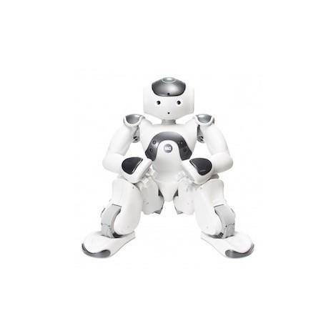 Humanoider Roboter NAO