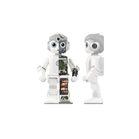 Educational robot Alpha Mini