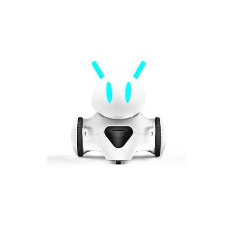 Educational robot Photon