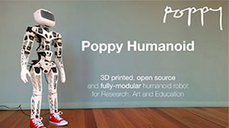 Buy the Poppy Humanoid robot on the Génération Robots website