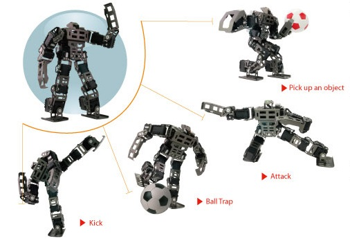 The Bioloid GP programmable humanoid robot is a mobile robot for competitions