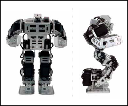 initial posture of the Bioloid GP programmable humanoid robot