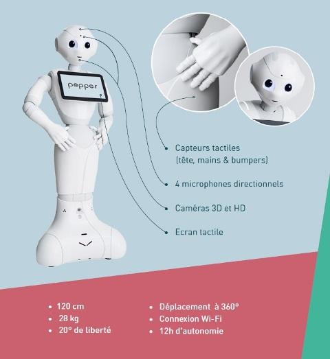 Spécifications techniques du robot humanoïde Pepper