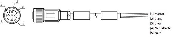 Polanordnung am M12-Stecker für Sicherheits-Laserscanner von SICK