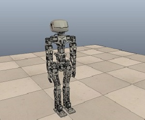 Simulation of the Poppy Humanoid robot