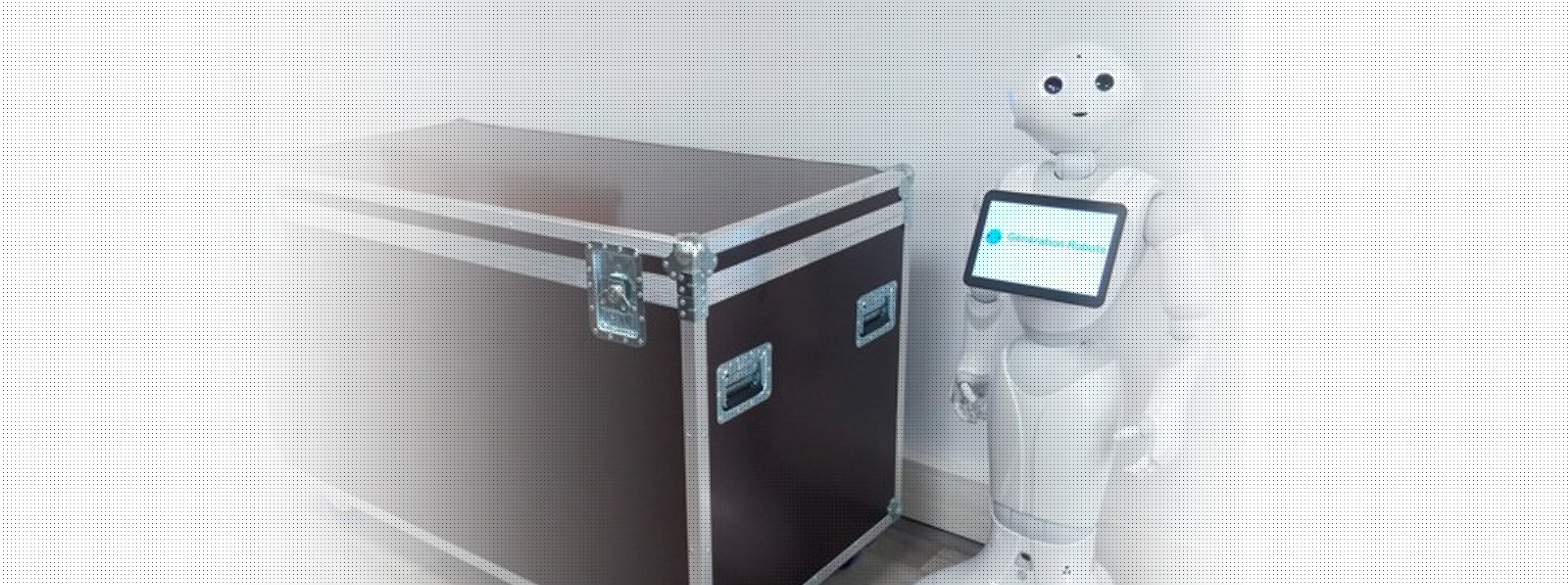 Accessories Pepper robot