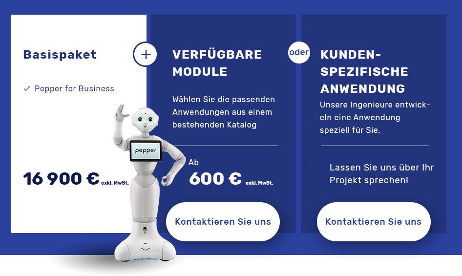 Angebote für Anwendungen Pepper Roboter