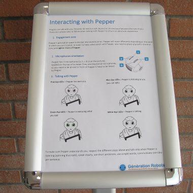 Display Pepper Roboter